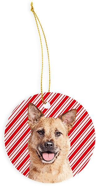candy cance red white stripes custom dog ornament