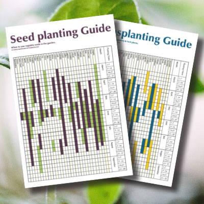 Seed Planting and Transplanting Charts