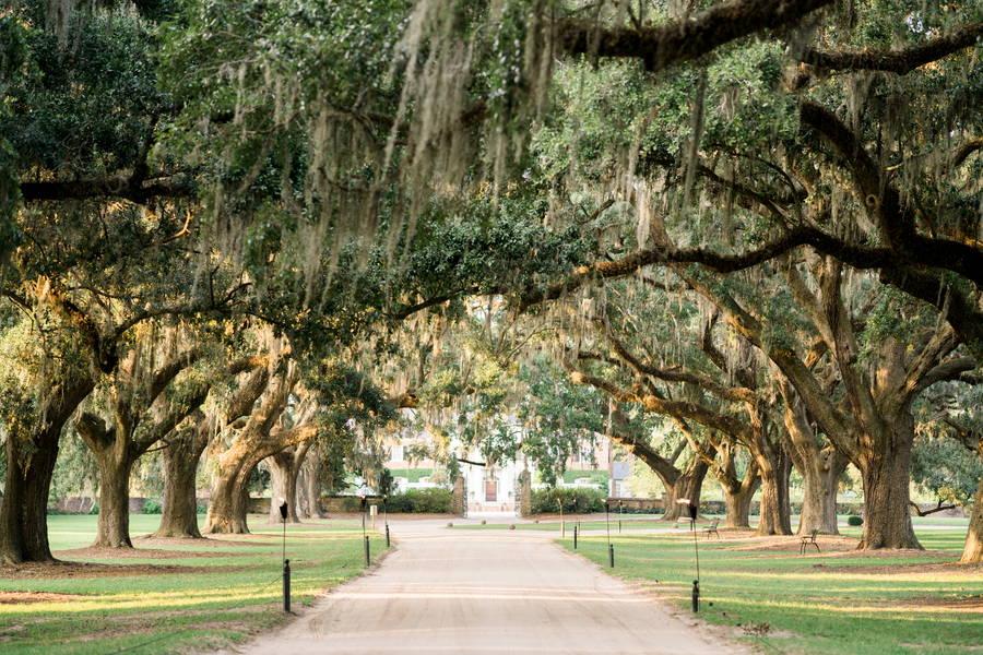Propose at Boone Hall Plantation, South Carolina