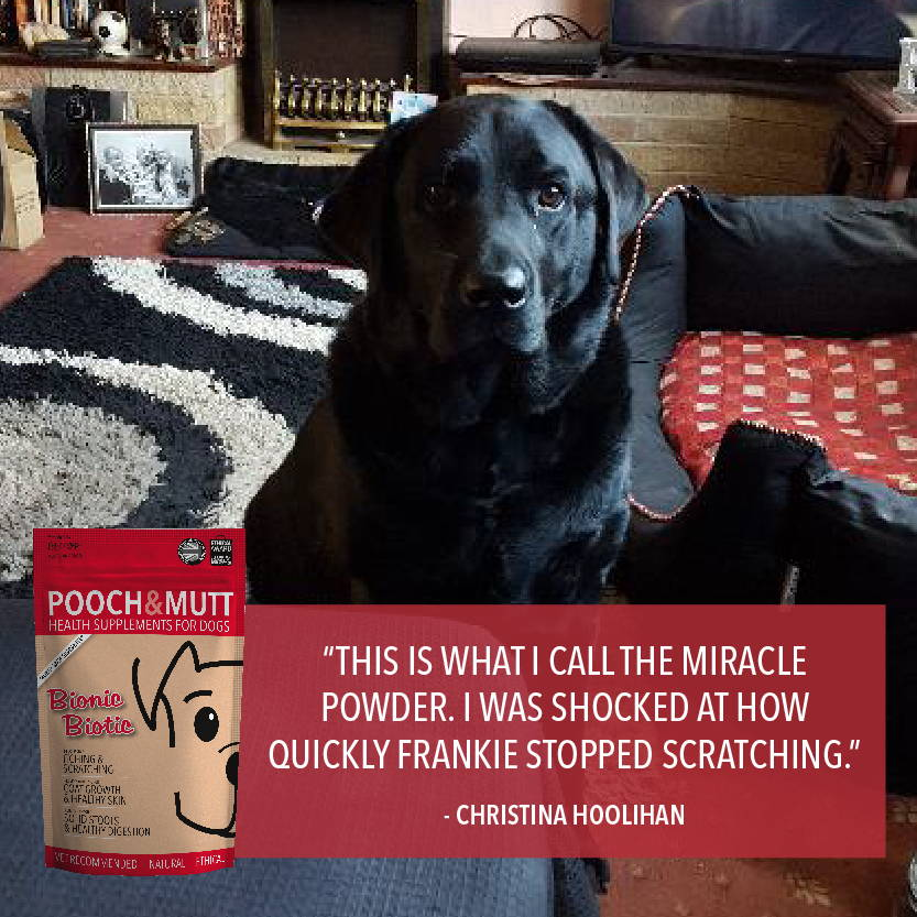 Pooch And Mutt Health Food For Dogs Grain Free Dog Pooch Mutt