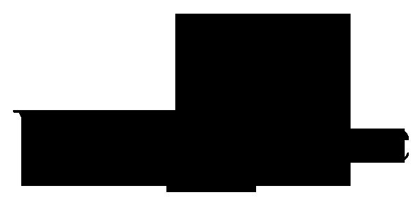 Yves Delorme Paris Logo