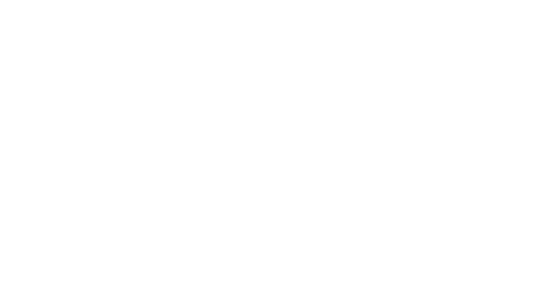 Save The Waves logo