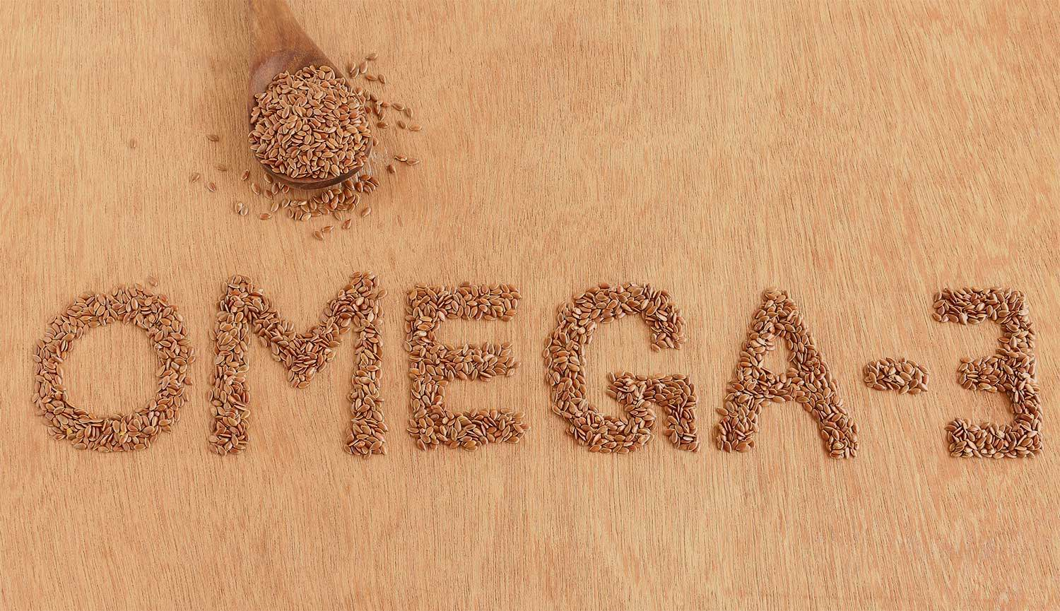 Flax Seeds are an excellent source of Omega 3 Fatty Acids