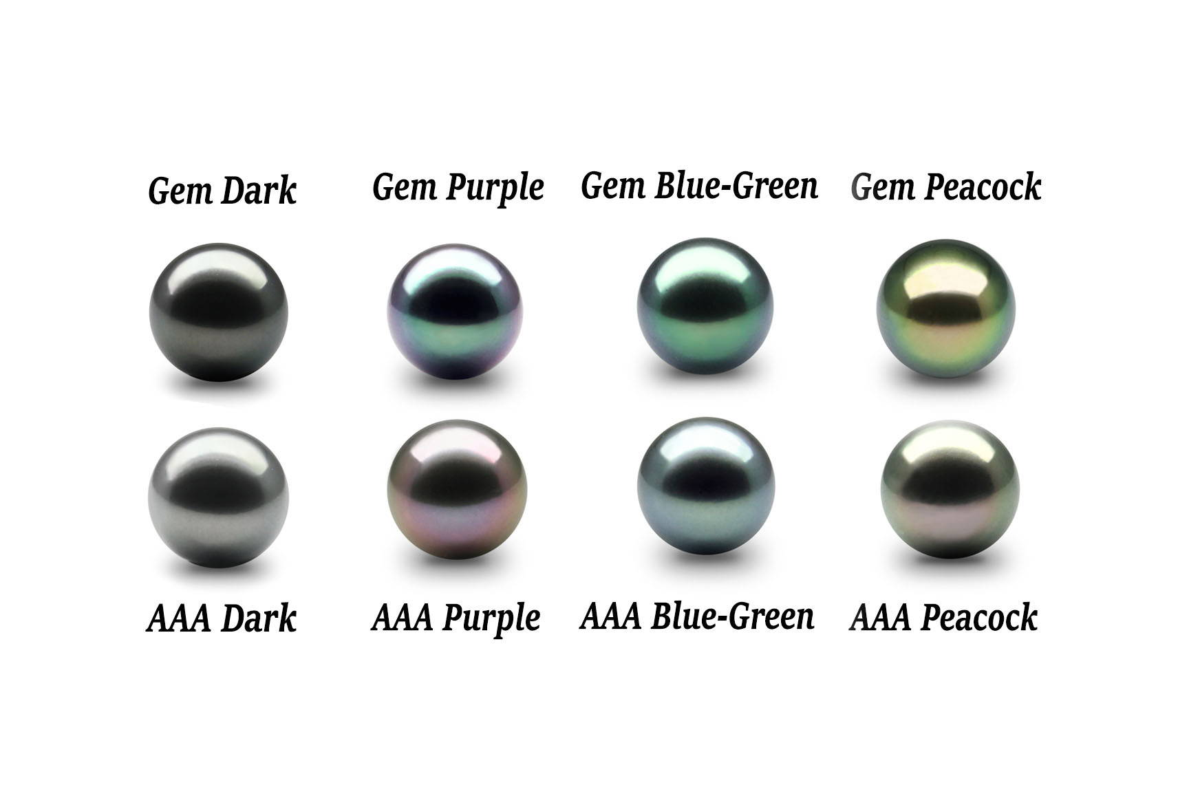 Tahitian Black Pearl Color Chart