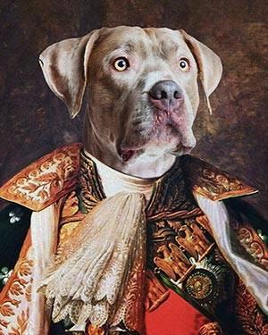 pitbull renaissance