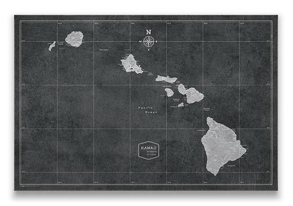 Hawaii Push pin travel map Modern Slate