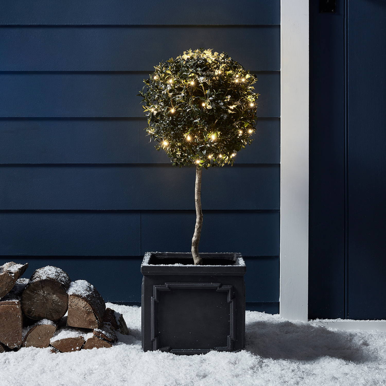Warm White Battery Lights on a small topiary tree