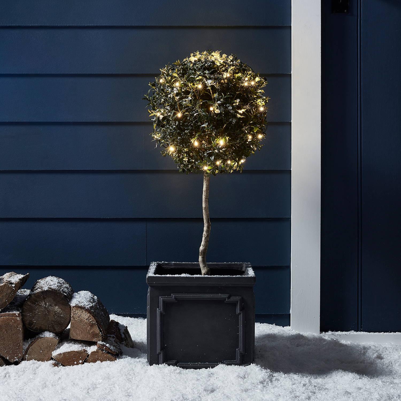 Warmweiß beleuchteter Buchsbaum vor einem blauen Holzhaus im Schnee