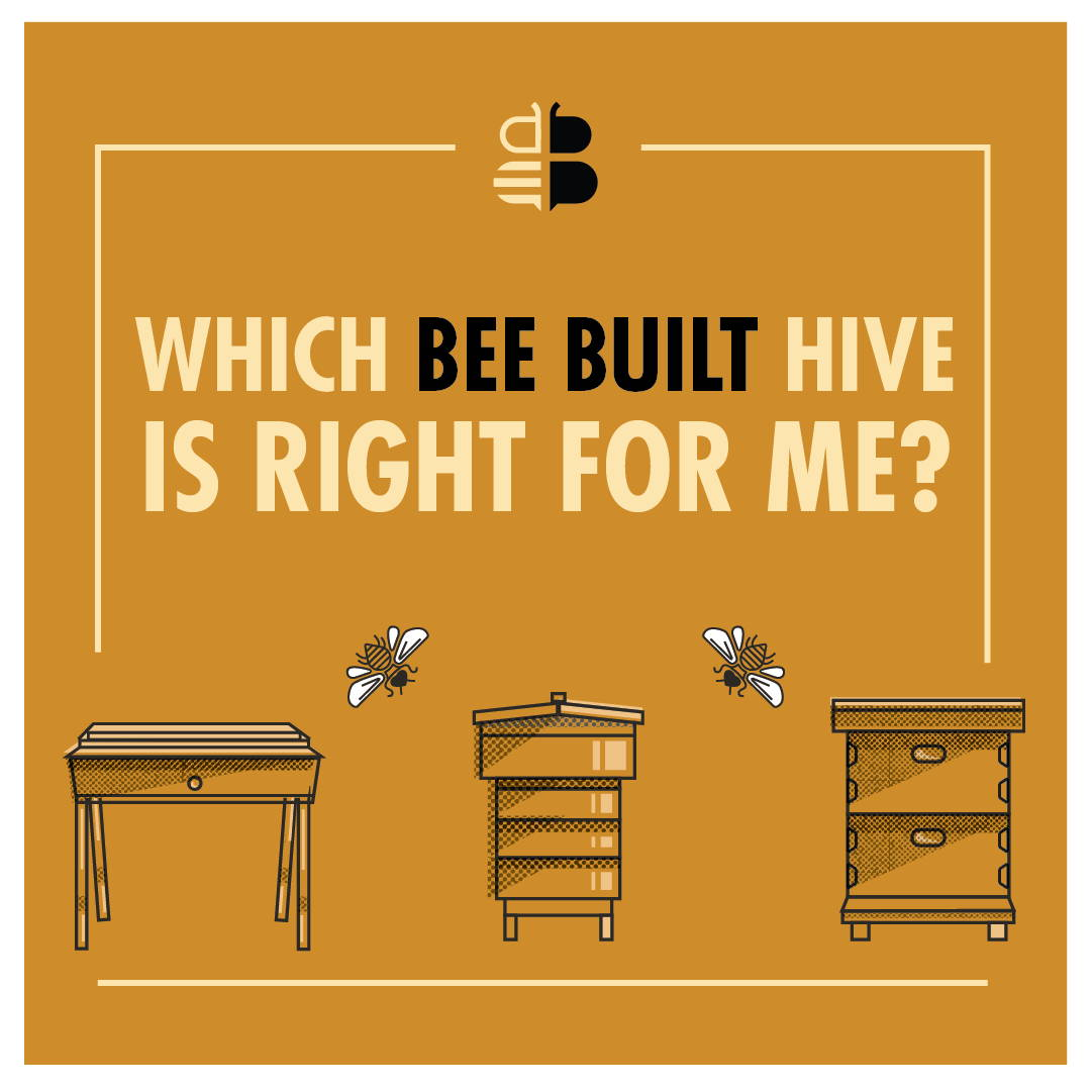 Which Hive Is Right For Me?