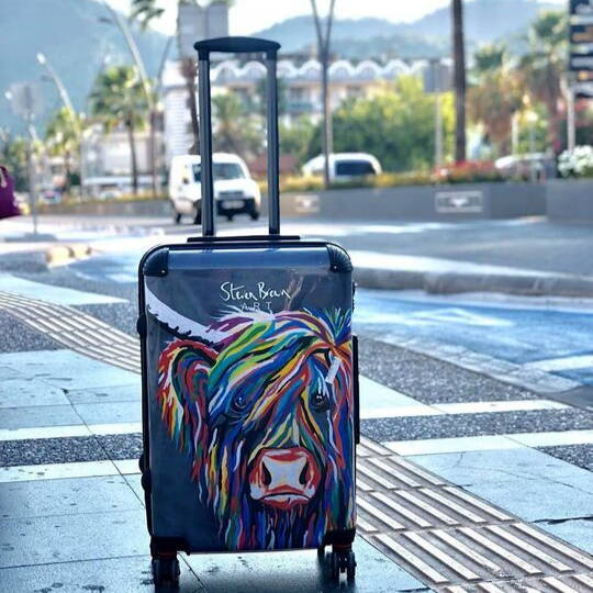 Steven Brown Suitcases - Travel  Collection