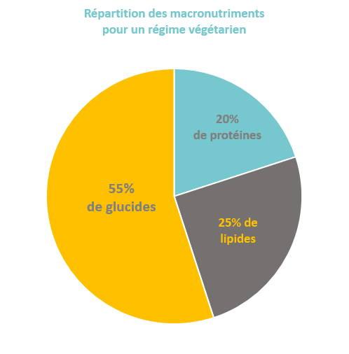 Répartition macronutriments végétarisme