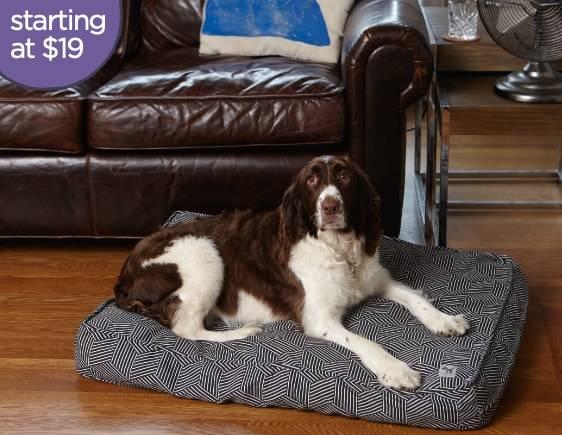 Dog Bed Duvet Features Molly Mutt