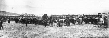 Large wagon train ready to travel the Oregon California Trail