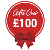 Christmas Gifts Over £100