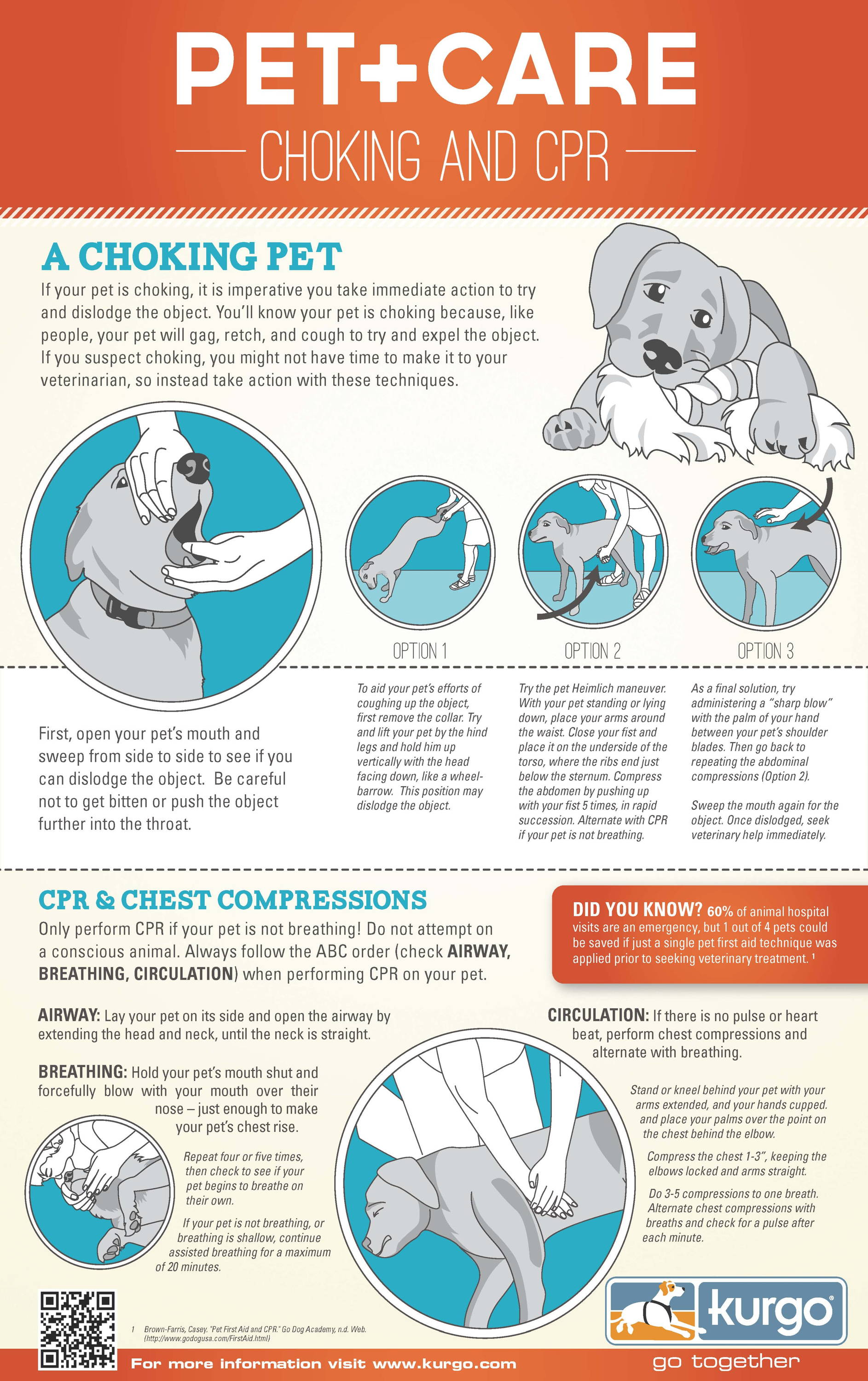 Dog CPR infographic
