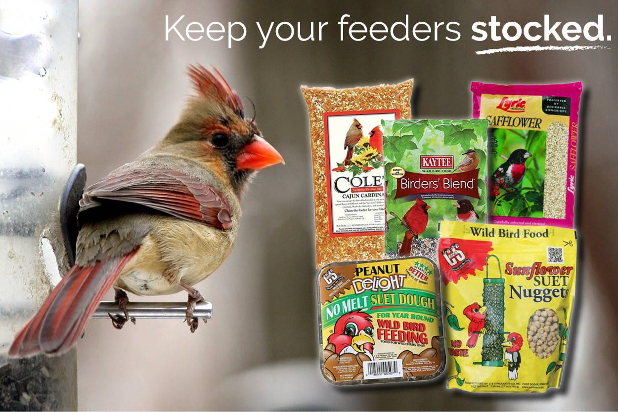 Shop Birdfeed