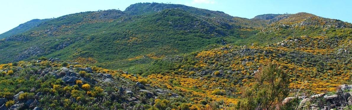 Mountains in the cetre of Portugal