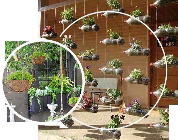 Hanging garden for household that has no floor space for garden