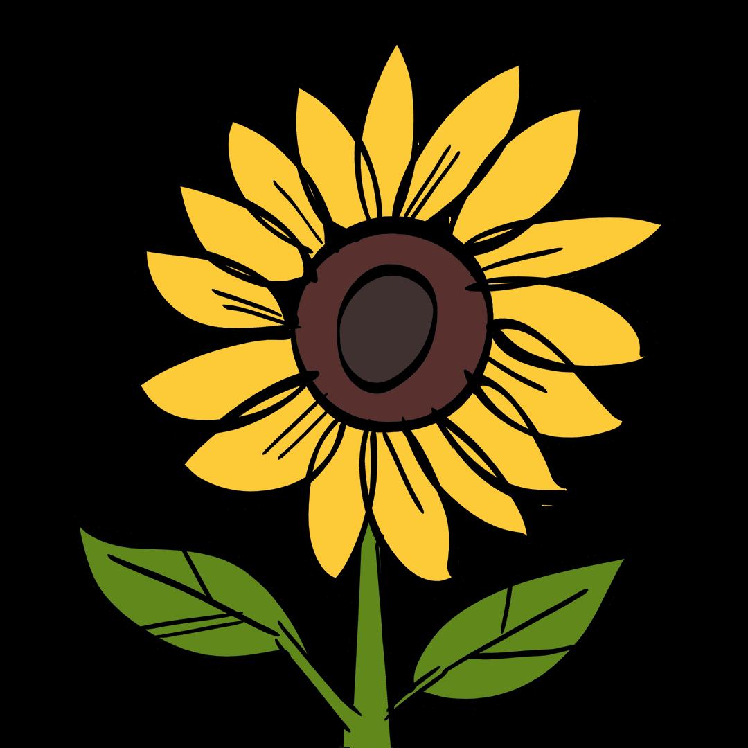 illustrated flower