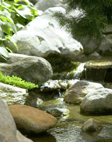 Japanse tuin en water