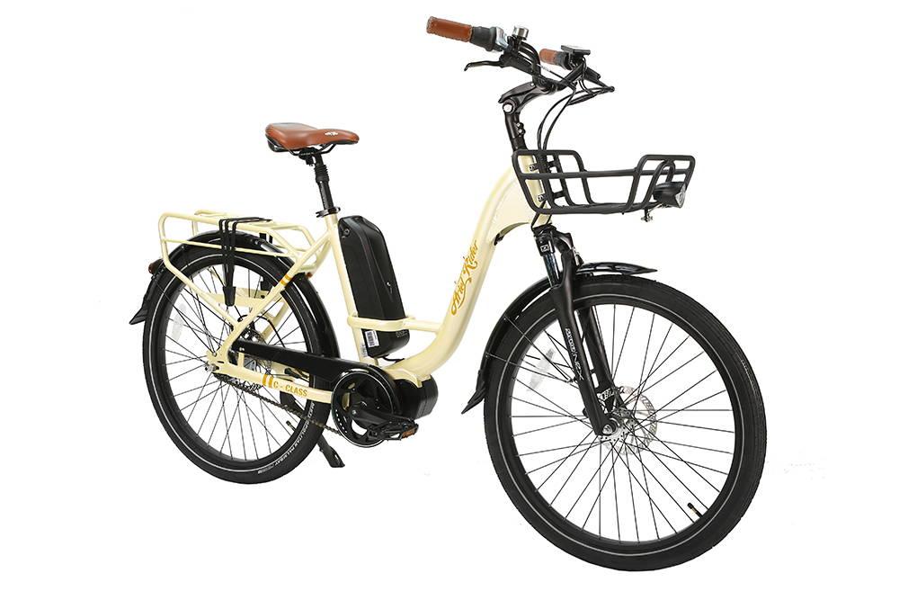 Mid Motor E-bike for Commuting