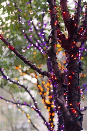 The Best Outdoor Halloween Lighting Ideas | Lights4fun.co.uk Ideas For Halloween Outside Lighting on lighting ideas for small spaces, lighting ideas for backyard, lighting ideas for a wedding, lighting ideas for a party,