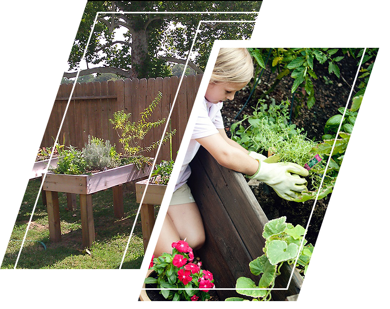 A child planting in a raised bed garden
