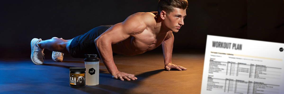 Programme training musculation