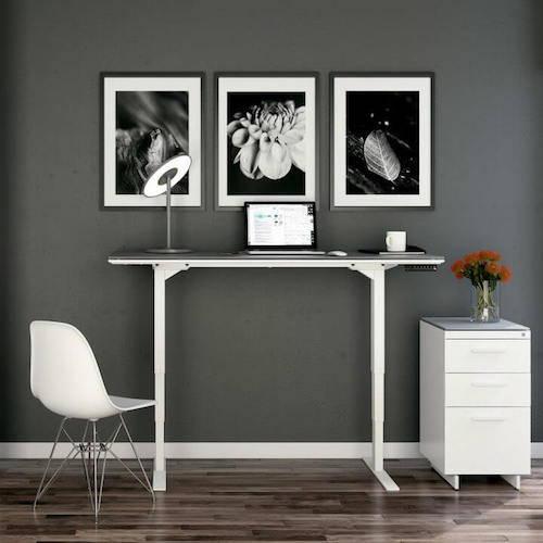BDI Centro Lift Standing Desk