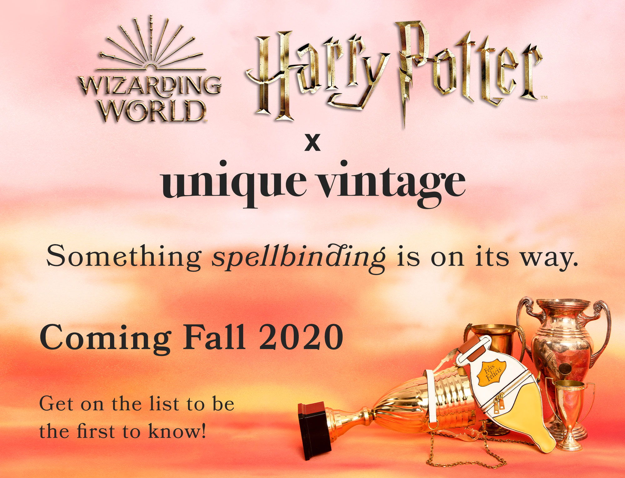 Harry Potter x Unique Vintage: Coming Fall 2020