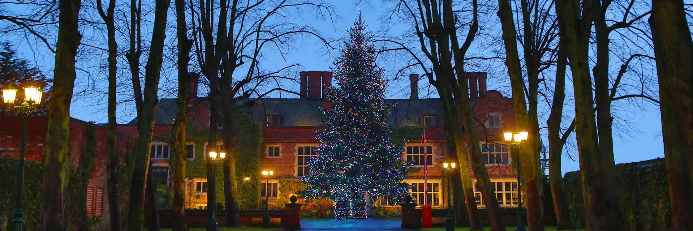 Large Christmas tree illuminated by multi coloured lights outside