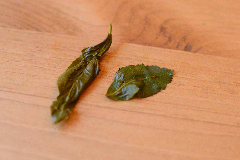 Japanese oolong leaves from Shizuoka, Japan