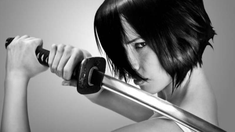 Japanese Steel Blade