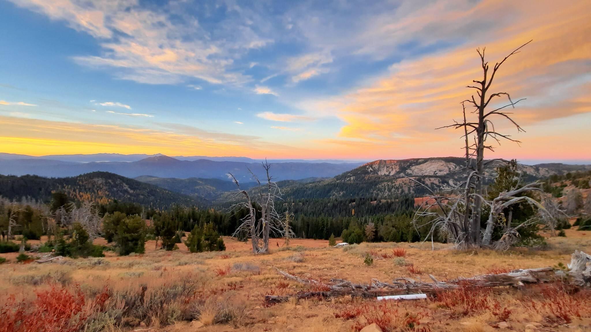 Renee She-ra Patcrick Blue Mountain trail