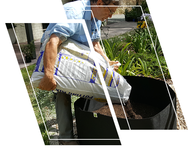Man putting soil in an Ecogardener grow bag