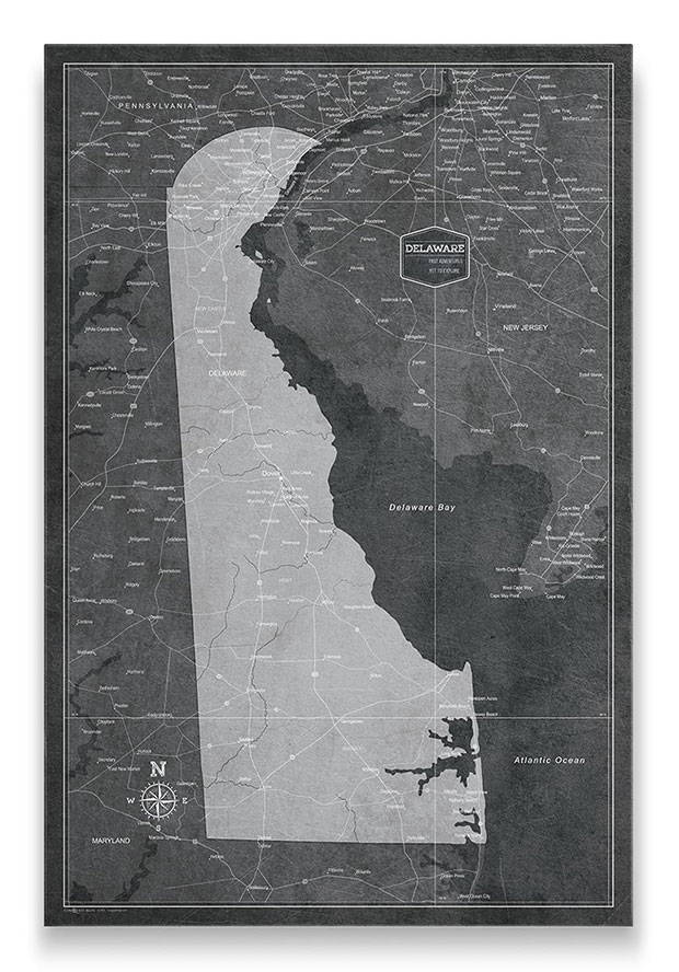 Delaware Push pin travel map modern slate