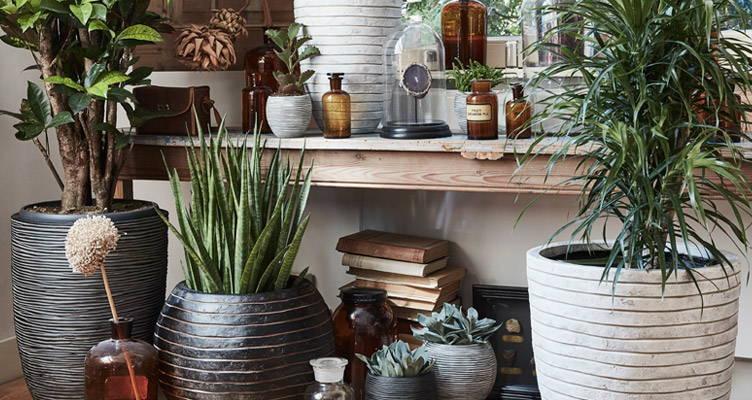 Capi flower pots