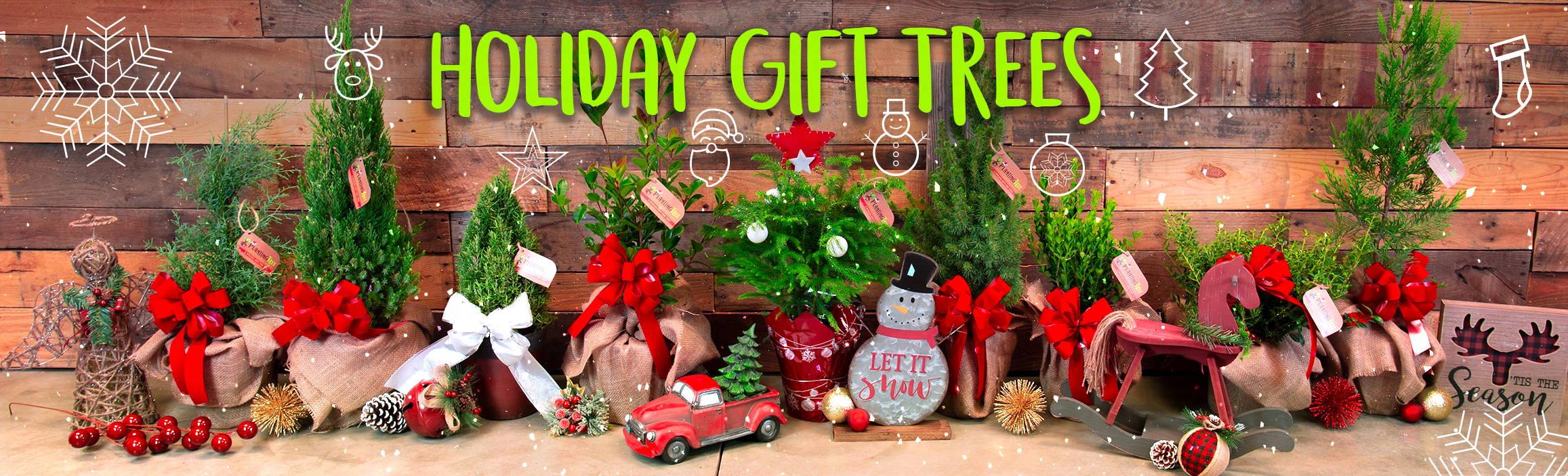 Holiday Gift Trees - Send A Mini Christmas Tree
