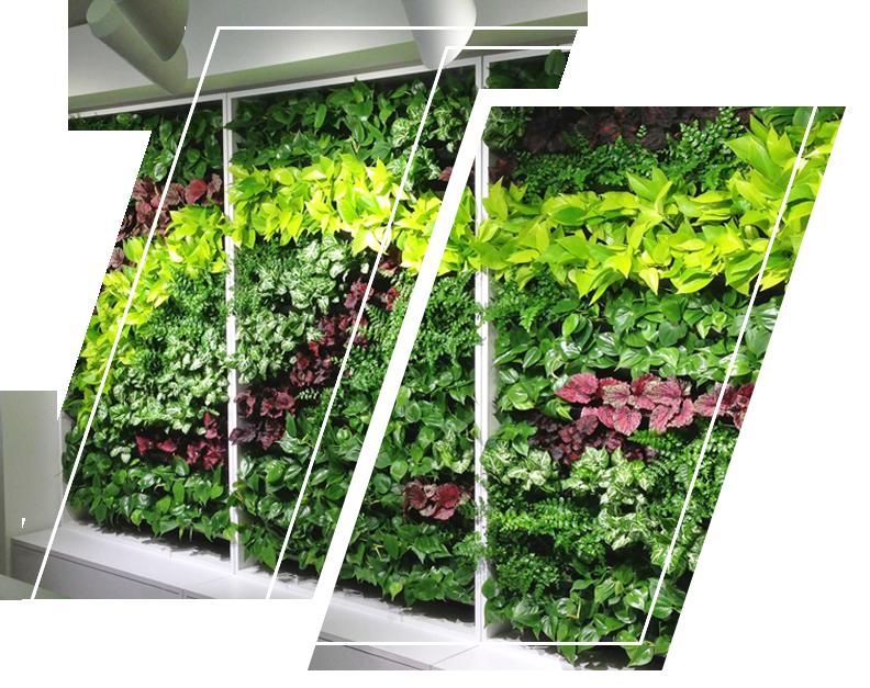 A vertical garden full of plants