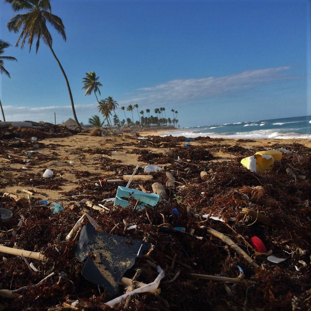 A beautiful palmed treed beach covered in plastic waste