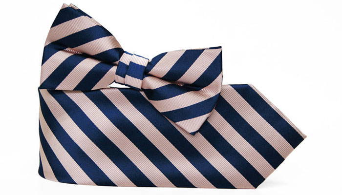 Navy blue and blush striped necktie and bow tie