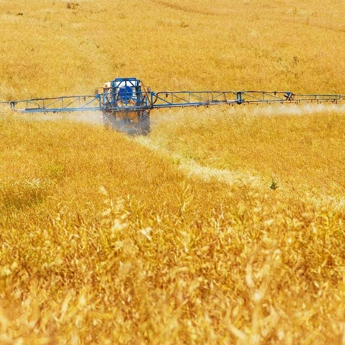 Pesticides being sprayed over cereal crops