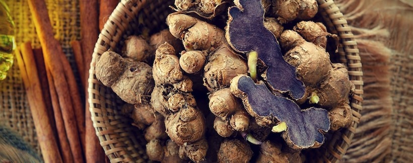 Black ginger has been used by men in Thailand for centuries a blood flow booster, male tonic herb and energy enhancer.