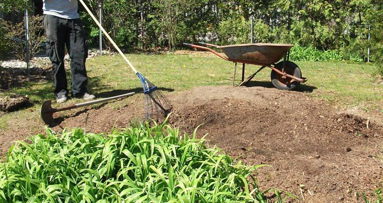 Einen neuen Rasen einsäen