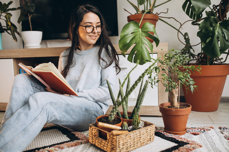 plantas en casa beneficios