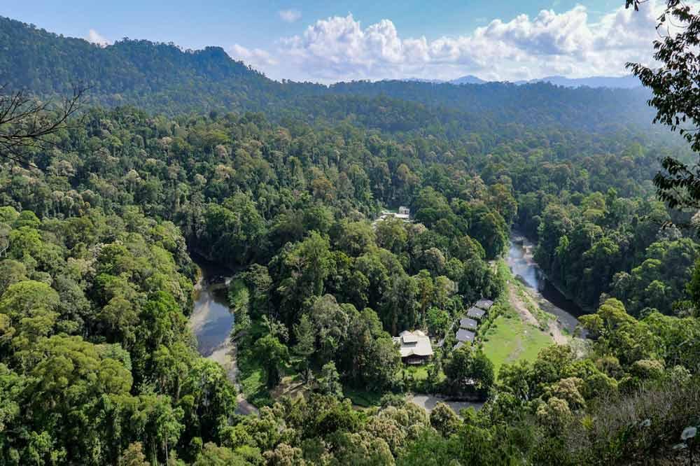 Travelbay Borneo Tours - Customer Reviews - Simon Collard - Danum Valley - Vista
