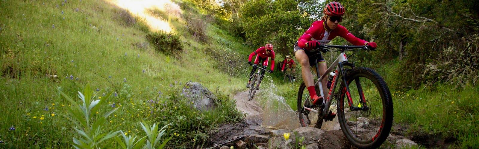 Riding the trails on Specialized bikes.
