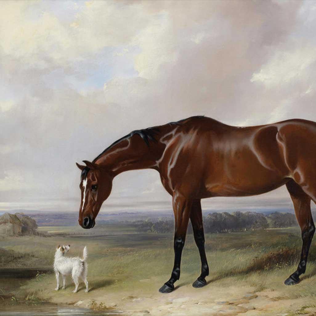 William Barraud Art