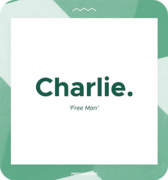 Charlie Instagram Message