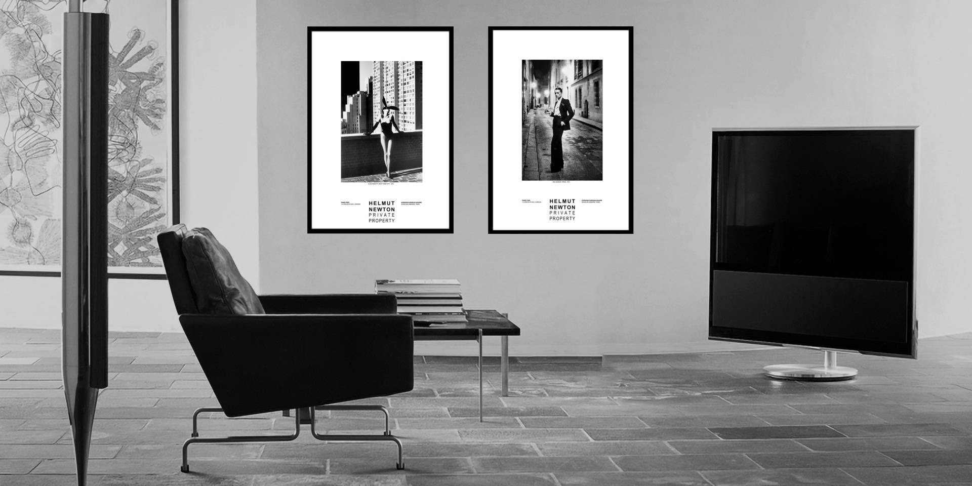 Helmut Newton Photography Free Gift Offer